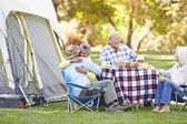 Two Senior Couples Enjoying Camping Holiday — ストック写真