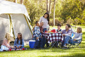Two Families Enjoying Camping Holiday In Countryside — Stock Photo