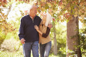 Couple Walking Through Autumn Woodland — Stock Photo