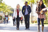 Students Walking Outdoors On University Campus — Foto de Stock
