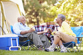 Senior Couple Enjoying Camping Holiday — Stock Photo