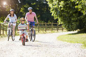 Asian Family On Cycle Ride — Stockfoto