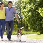 Hispanic Couple Taking Dog For Walk In Countryside — Stock Photo #50474777