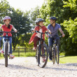 Hispanic Family On Cycle Ride In Countryside — Stock Photo #50475389