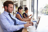 Businessman Using Laptop In Coffee Shop — Stock Photo
