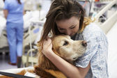 Therapy Dog Visiting Young Female Patient In Hospital — Stock Photo