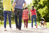 Rear View Of Family Taking Dog For Walk In Countryside — Stock Photo