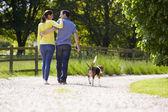 Rear View Of Hispanic Couple Walking Dog In Countryside — Stock Photo
