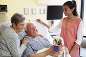 Pet Therapy Dog Visiting Senior Male Patient In Hospital — Stock Photo