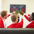 Sports Fans Watching Game — Stock Photo #50697595