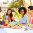 Group Of Friends Enjoying Meal — Stock Photo #50697773