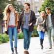 Group Of Friends Walking — Stock Photo #50697841