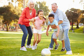 Grandparents Playing Soccer With Grandchildren — Stock Photo