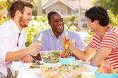 Three Male Friends Enjoying Meal — Foto Stock