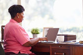 Mature Woman Using Laptop — Foto de Stock