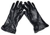 Ladies Leather Gloves — Stock Photo