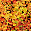 Seamless autumn background — Imagen vectorial