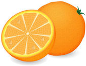 Ripe orange on a white background — Stock Vector