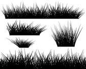 Silhouette von gras auf weißem hintergrund — Stockvektor
