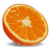 Slice of juicy orange 2 — Stock Vector