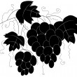 Silhouette of branches of grapes - Vektorgrafik