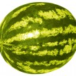 Watermelon on a white background — Imagen vectorial