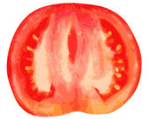Tomato on a white background — Stock Vector