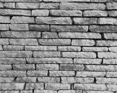 Monochrome stone wall — Stock Vector