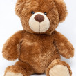 Teddy bear — Stock Photo #13207876