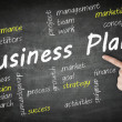 Business Plan wordcloud — Stok fotoğraf