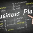 Business Plan wordcloud — Stockfoto