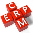 Crossword CRM ERP — Stock Photo
