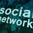 Social Network — Stock Photo #26826213