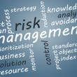 Risk Management — Stock Photo #27253391