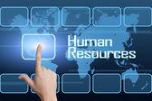 Human Resources — Stock Photo