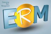 Enterprise Risk Management  — Foto de Stock