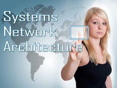 Systems Network Architecture — Foto Stock
