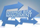 Enterprise Risk Management — Stock Photo