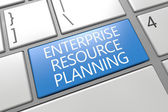 Enterprise Resource Planing — 图库照片