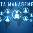 Data Management — Stock Photo #48703121