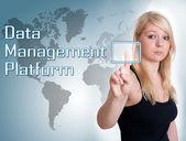 Data Management Platform — Stock Photo