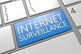 Internet Surveillance — Stockfoto