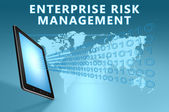 Enterprise Risk Management — Stock Photo