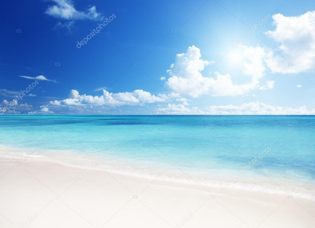Sand of beach caribbean sea  Stock Photo #12441506