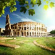 Colosseum in Rome, Italy — Stock Photo #12462816