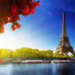 Color of autumn in Paris — Stock Photo