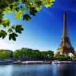 Seine in Paris with Eiffel tower — Foto de Stock