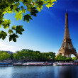 Seine in Paris with Eiffel tower - Stock Photo