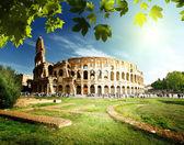 Colosseum in rome, italië — Stockfoto
