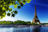 Seine in Paris with Eiffel tower — Stok fotoğraf